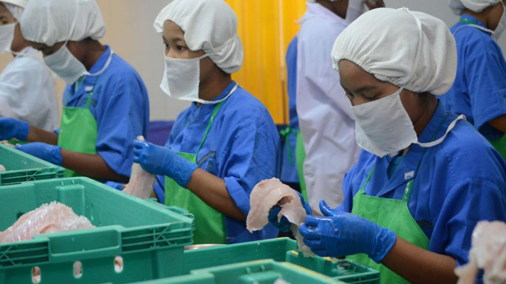 Fishery exports cross $700 mln